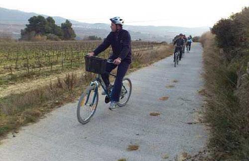 Sykkeltur på vingård i Penedès